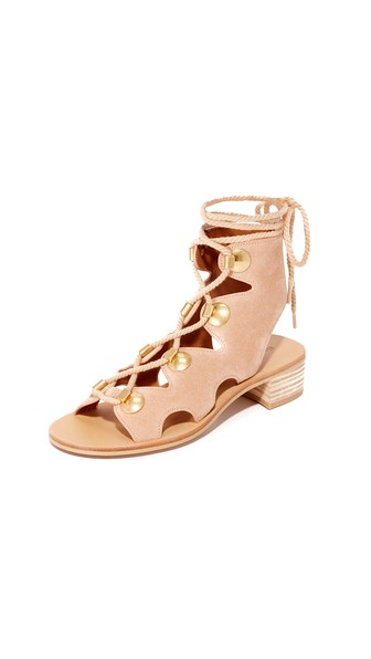 6f29410a9 SEE BY CHLOÉ GLADIATOR LACE UP SANDALS, CIPRIA | ModeSens