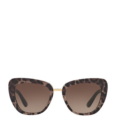 DOLCE & GABBANA Gradient Squared Cat-Eye Acetate Sunglasses, Brown